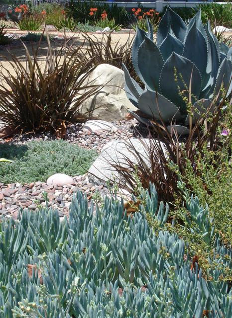 Garden Details Portfolio mediterranean-landscape