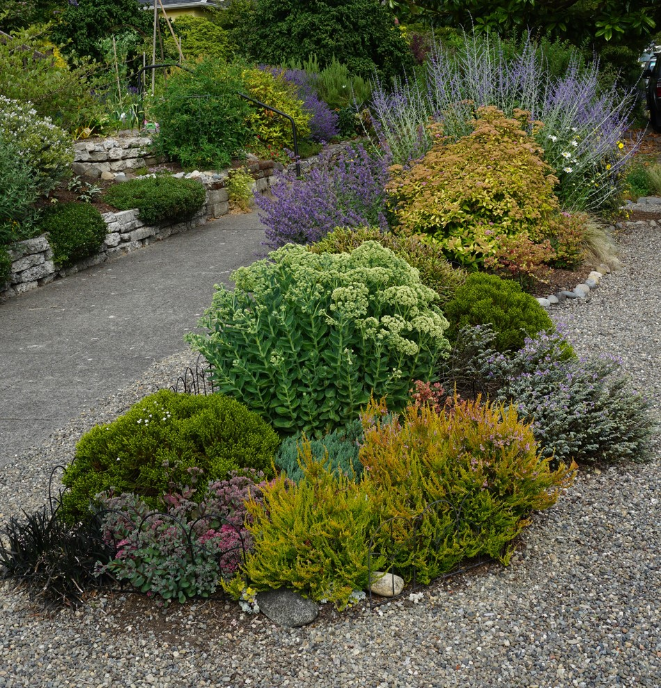 Inspiration for a coastal landscaping in Seattle.