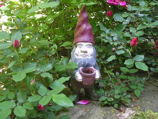 Eclectic Landscape Garden Gnome