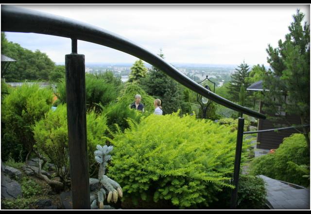 garden in japanese style asian-landscape