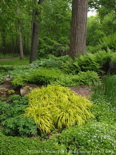 Garden In The Woods Eclectic Landscape Minneapolis