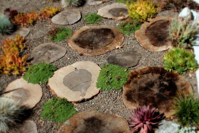 Garden path  Corte Madera contemporary-landscape