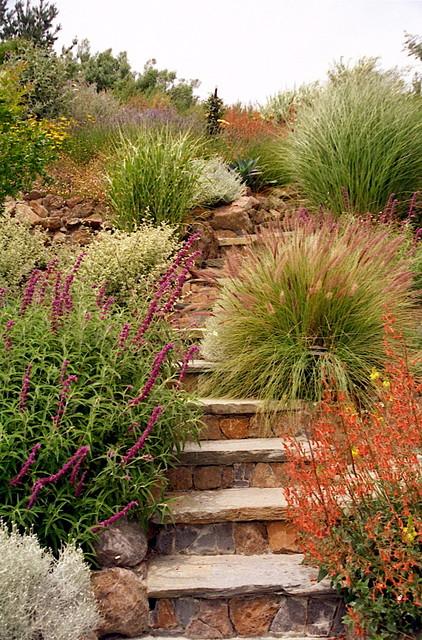 Garden Paths and Landscape Steps contemporary-landscape