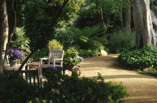 Garden Plantings traditional-landscape