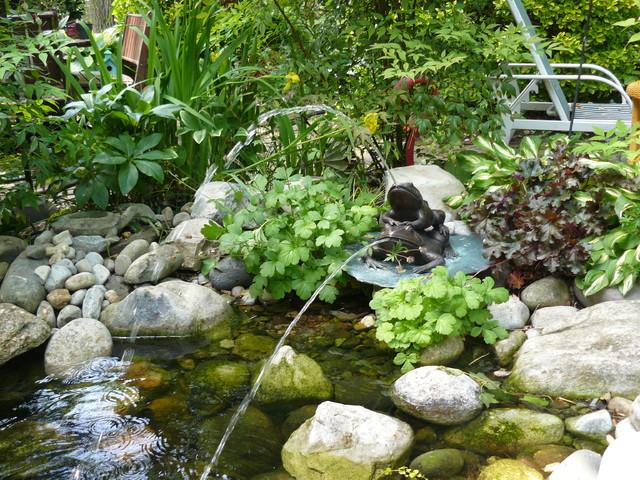 Garden Pond Rydal, Pa eclectic-landscape