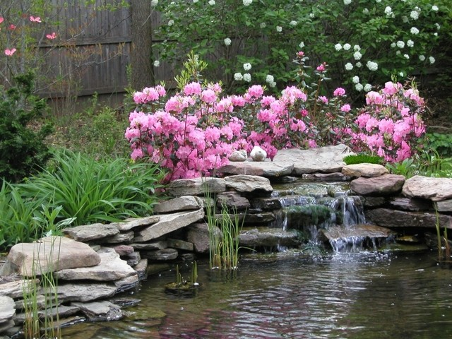 Garden pond with waterfall and custom landscaping for Fish pond landscaping