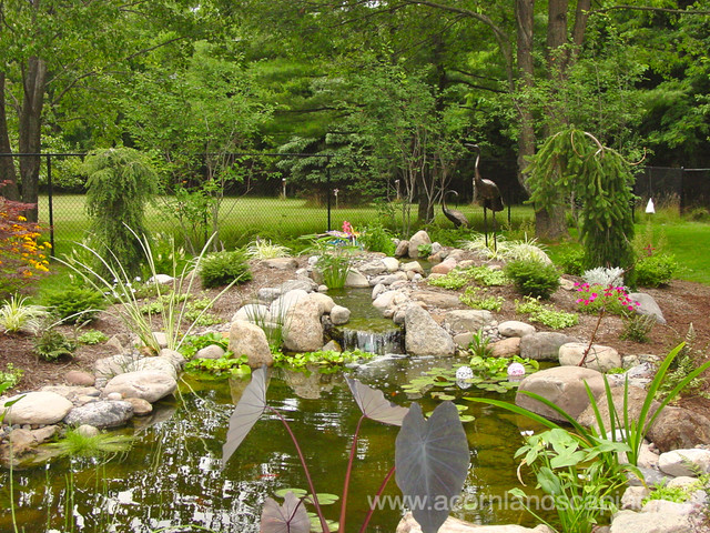 Garden Ponds Fish Ponds Koi Ponds Waterfall Ponds