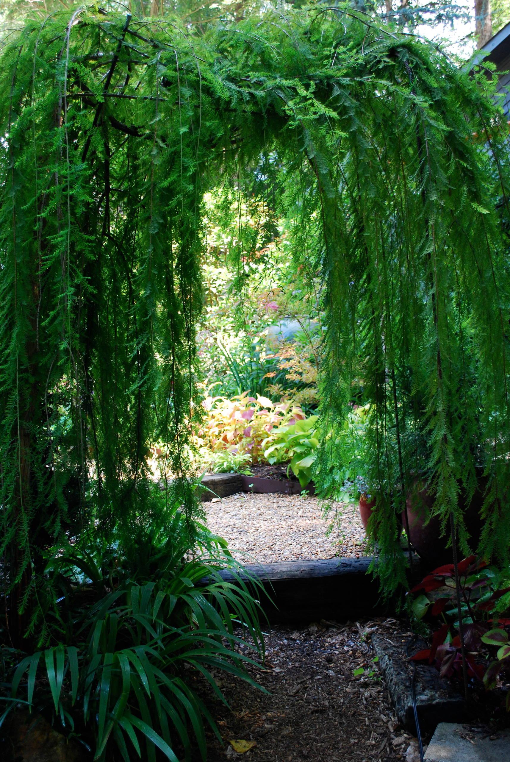 Garden Room Entrance.