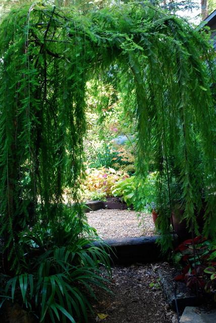 Garden Room Entrance. eclectic-landscape