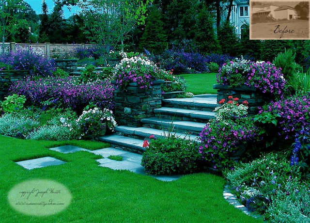 Garden Steps Plantings Traditional