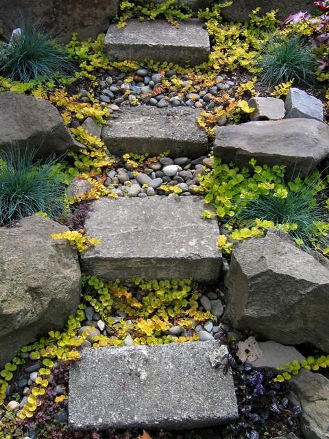 Garden Steps landscape