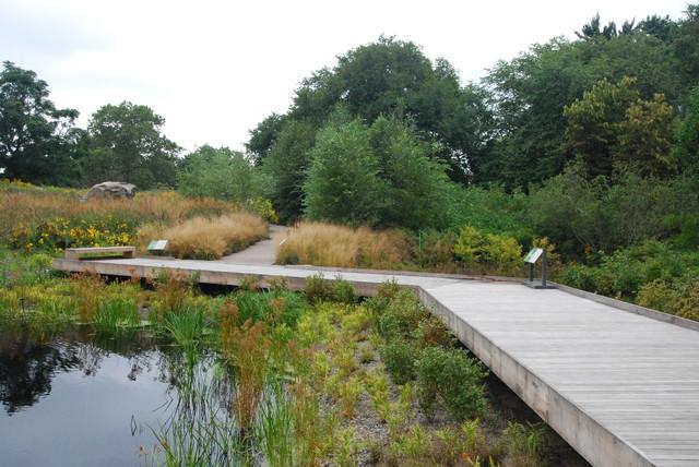 Garden Tour - Exploring Natives at the New York Botanical Garden landscape