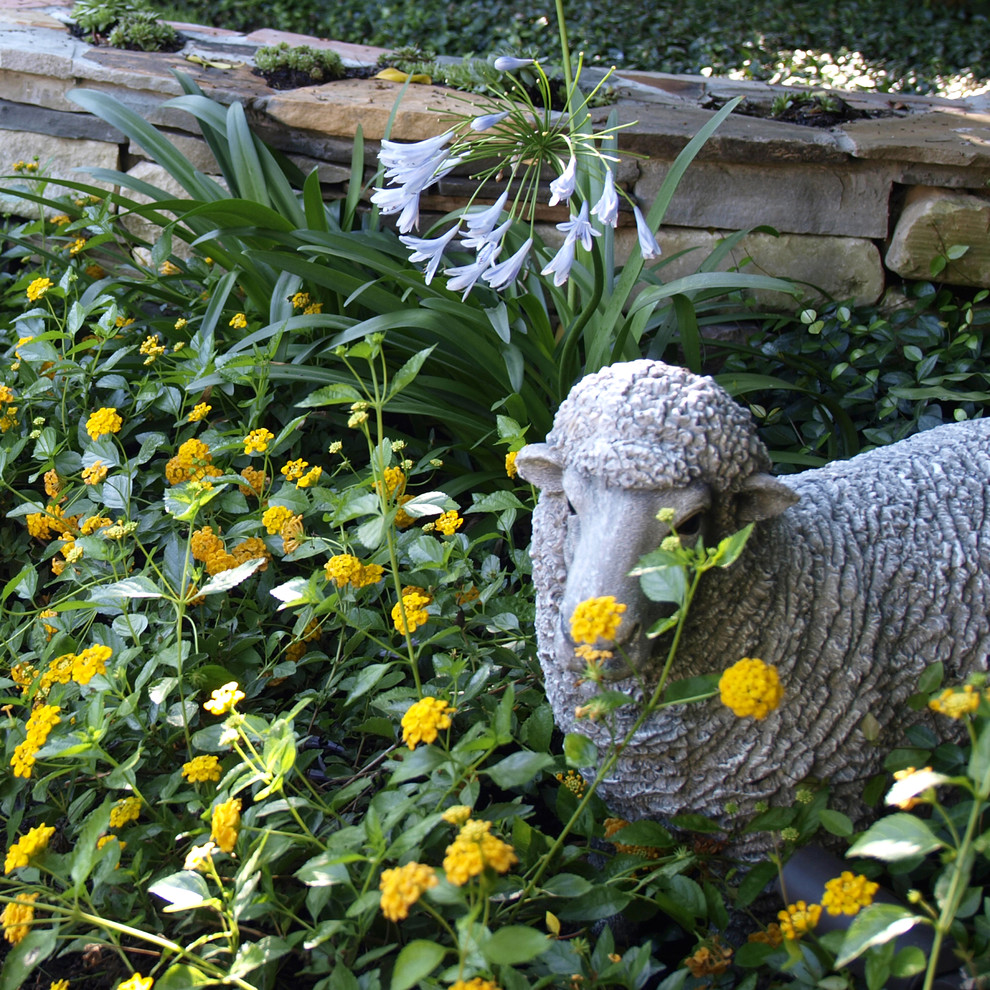 Simple tips to embellish your backyard based on your budget
