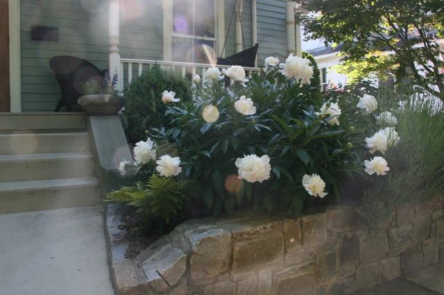 Gardening with Confidence® Peony.JPG landscape