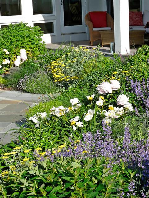 Gardens traditional-landscape