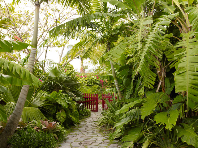 Golden rock inn nevis west indies for Jungle garden design ideas