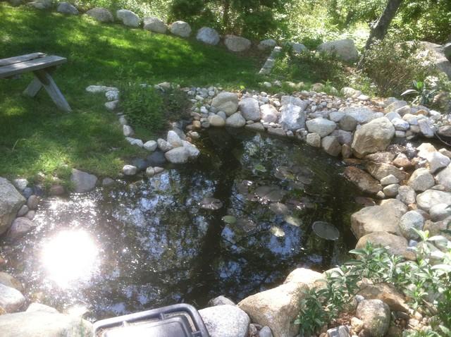 Goldfish pond waterfall build asian landscape for Goldfish pond designs