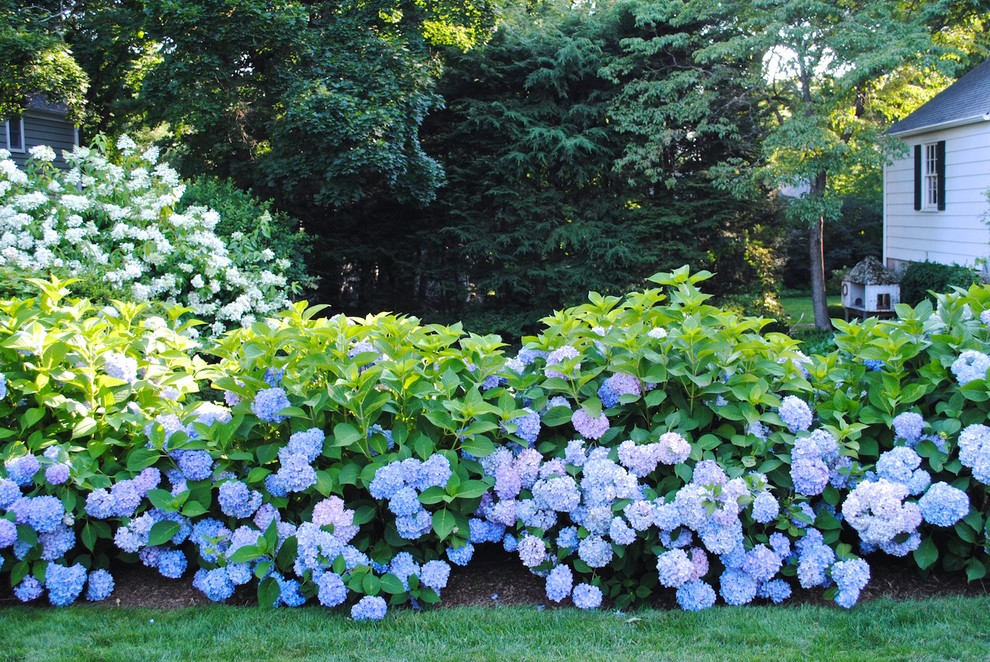 Photo of a large traditional partial sun backyard mulch garden path in New York.