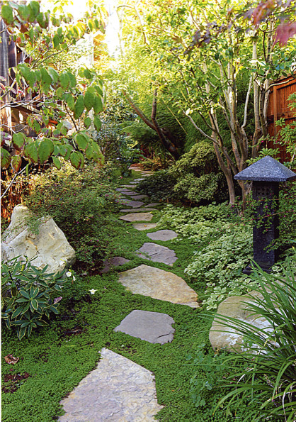 Goodman Landscape Design asian landscape