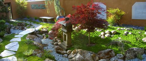 Rośliny ozdobne w ogrodzie japońskim
