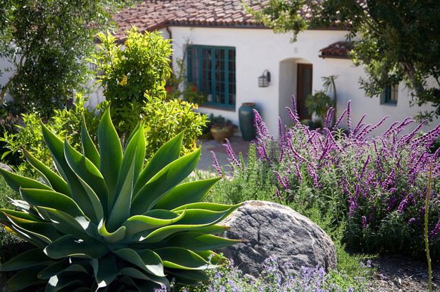 Photo of a mediterranean landscaping in Santa Barbara.