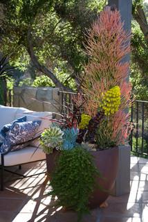 Grace Design Associates container garden