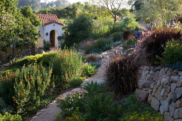 Grace design associates mediterranean landscape for Associate landscape architect