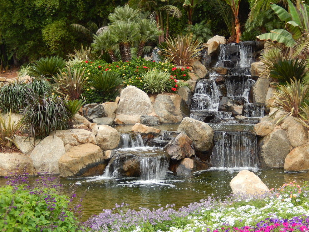 Design ideas for a tropical landscaping in San Diego.