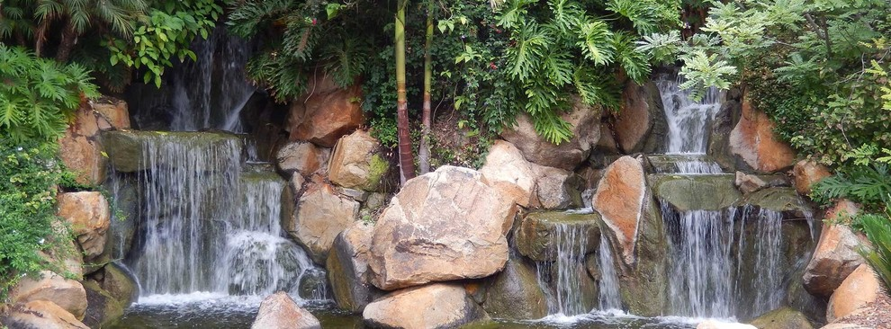 Inspiration for a landscaping in San Diego.