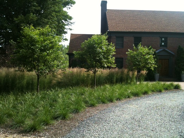 Grass border under crabapples front entry eclectic for Border grasses for landscaping