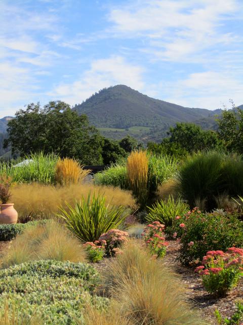 Grass Garden Glen Ellen CA - Mediterranean - Landscape - San Francisco - By Susie Dowd ...