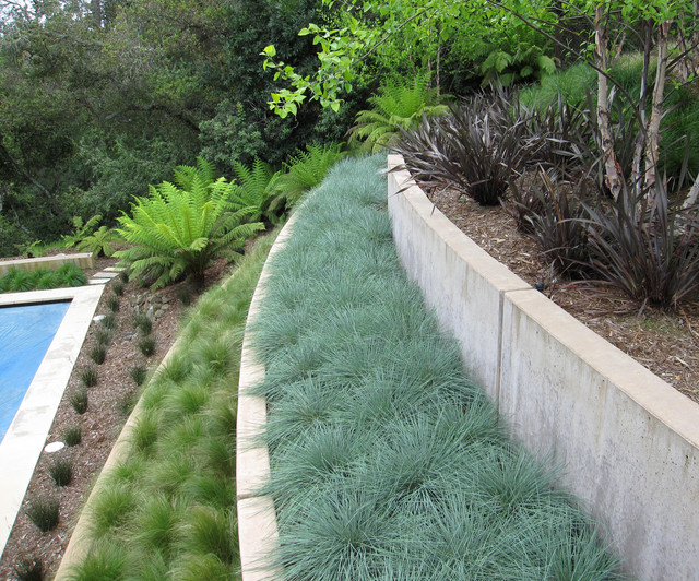 Grass Terraces contemporary landscape