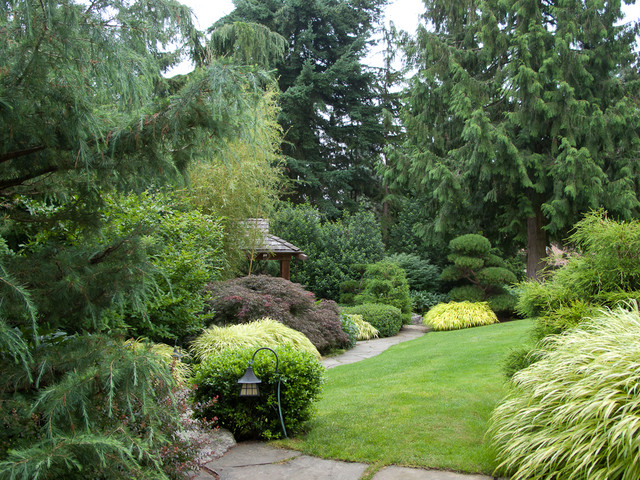 Backyard ideas on pinterest evergreen landscaping and for Traditional landscape