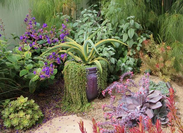 Grecian Grover Beach Garden contemporary-landscape