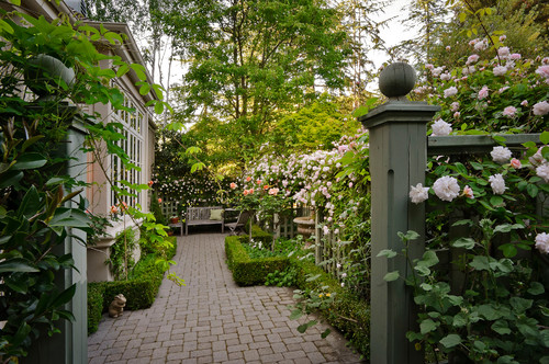 Pocket gardens pint size patios and urban backyards for Small trees for courtyard gardens