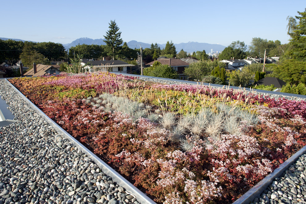 This is an example of a contemporary full sun rooftop landscaping in Vancouver.