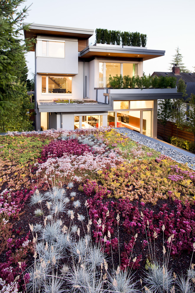 Photo of a contemporary full sun rooftop landscaping in Vancouver.