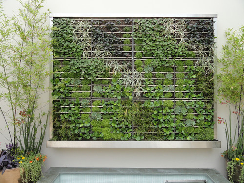 Superior Replacing A Large Bathroom Window To Encase A Green Living Wall