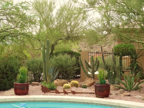 A refreshing pool is the perfect thing for those hot and dry climates, but if you don't want to escape from your client completely, create the oasis feel with the desert aesthetic around your water.