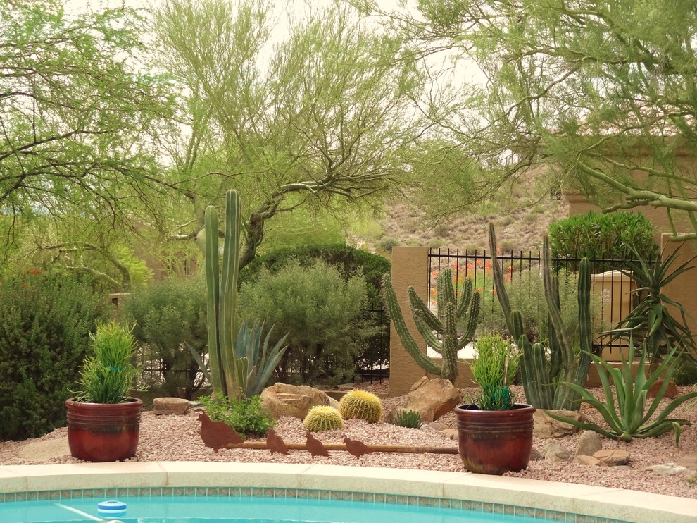 Design ideas for a southwestern drought-tolerant landscaping in Phoenix.