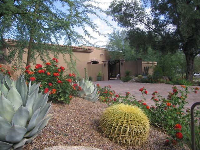 Colorful Desert Plant Combinations, Southwest Garden Plants