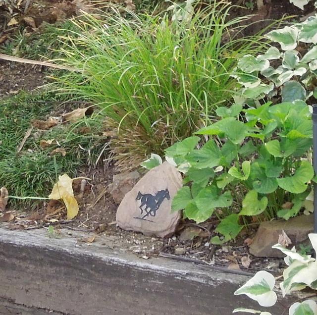 Heather's Garden eclectic-landscape