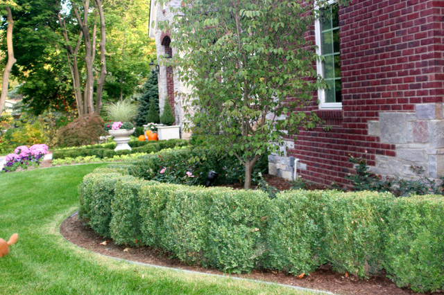 Hedging traditional landscape detroit by courtyard for Courtyard stone landscape