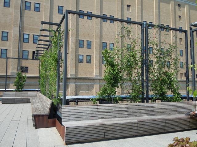 High Line Moderne Jardin Los Angeles Par Natalie Myers