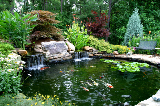 Higher 39 s koi pond traditional landscape atlanta by for Koi pond shade ideas