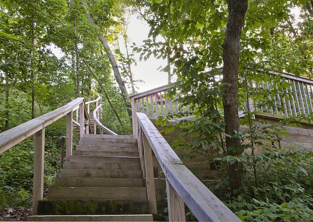 Highland Park Residence 3 landscape