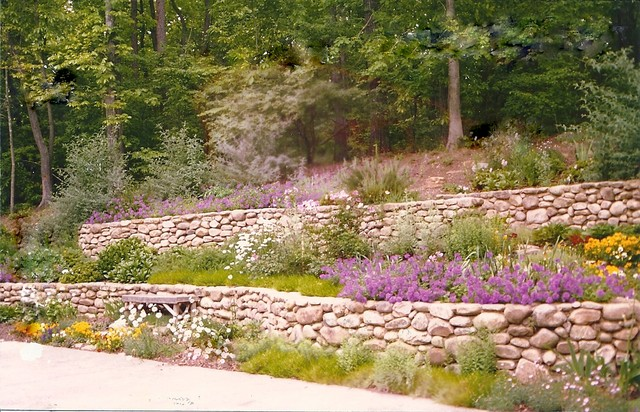 Hill along driveway transformed into butterfly garden Rustic