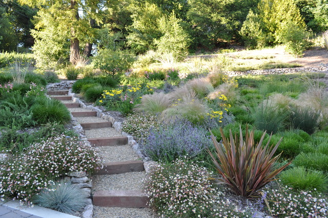 contemporary landscape by huettl landscape architecture - Garden Ideas To Replace Grass
