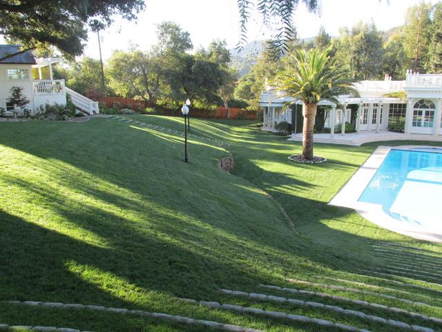 Hills estate traditional landscape san francisco for Estate landscape design