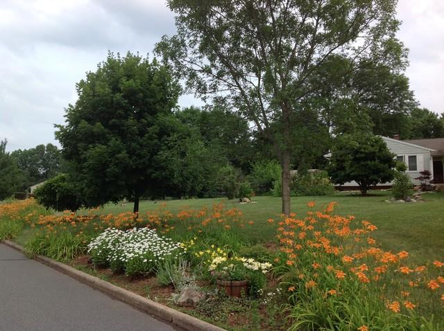Hillsborough nj low maintenance landscape garden art for Low maintenance pool landscaping